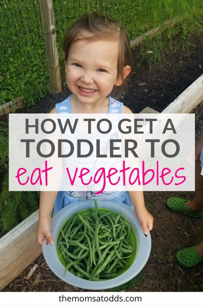 How to Get a Toddler to Eat Vegetables in 8 Easy Steps!!!