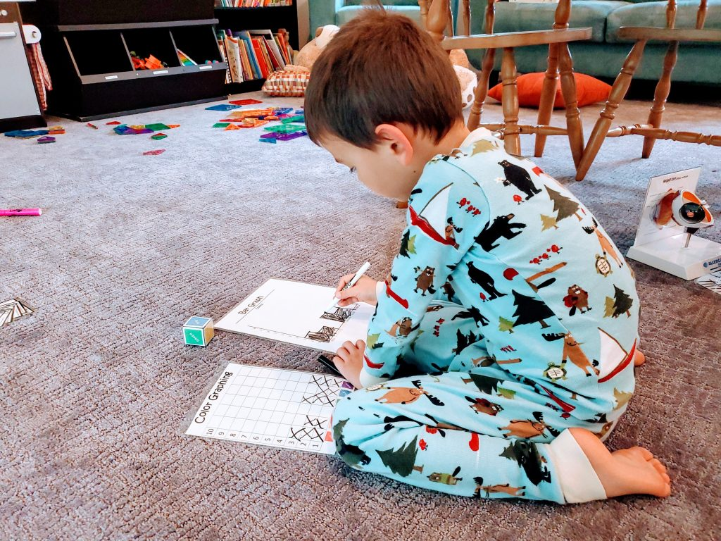 Easy and Fun Graphing Activity for Kindergarteners at Home