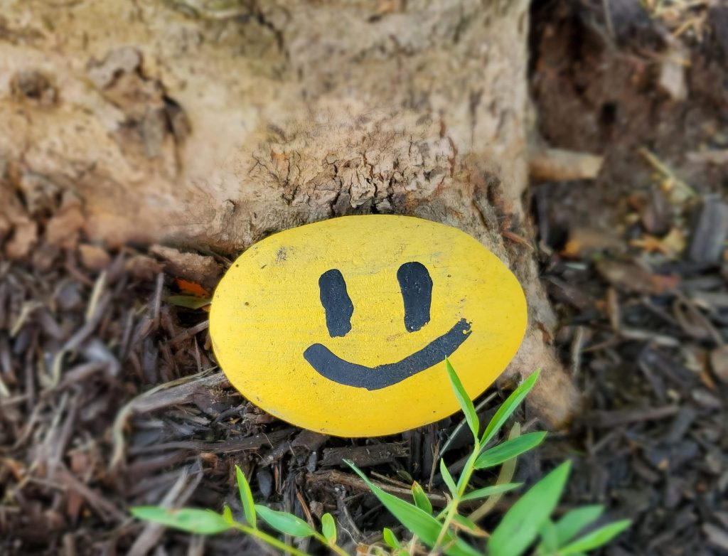 Easy and Inspirational Rock Art Ideas for Kids
