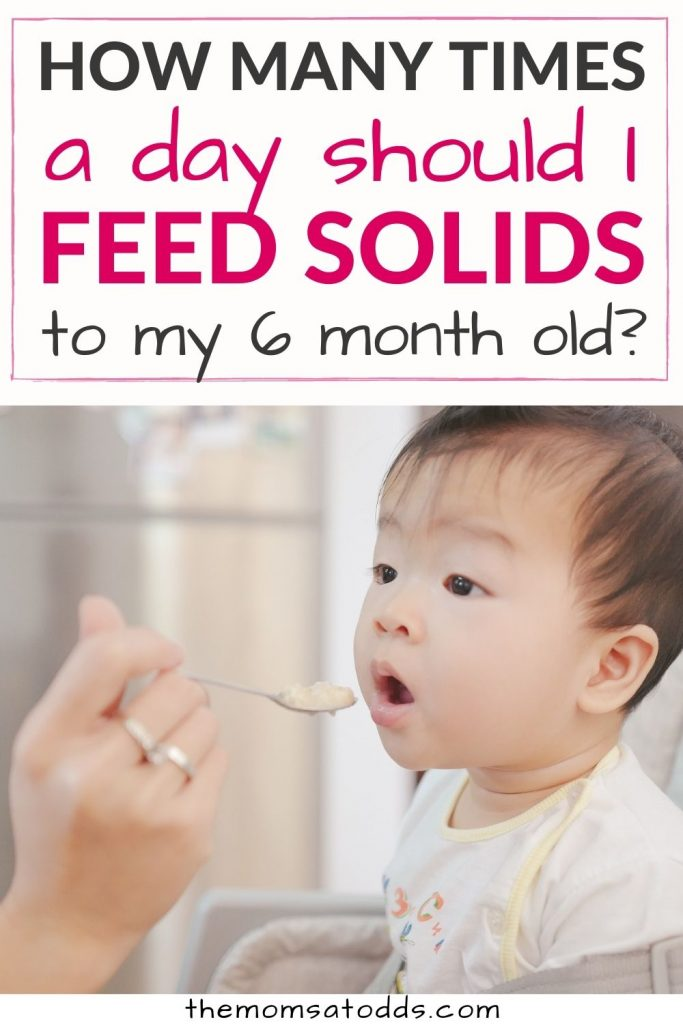 How Many Times a Day Should I Feed Solids to My 6 Month Old?