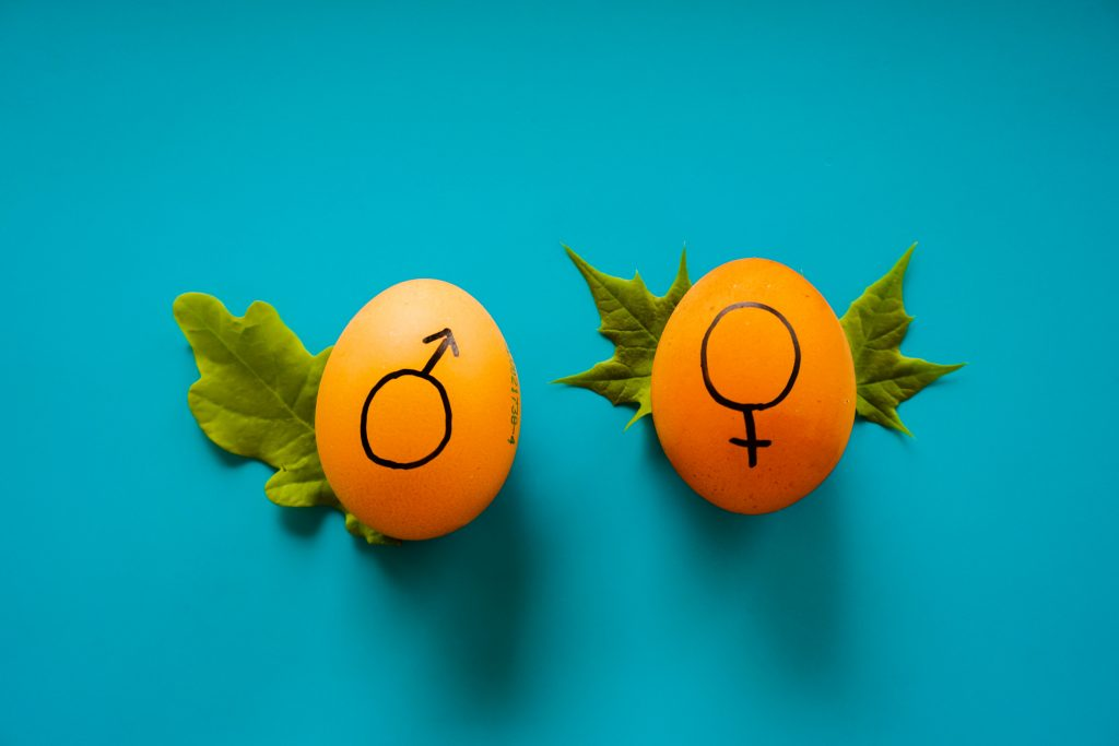To the Parent Struggling With Gender Disappointment
